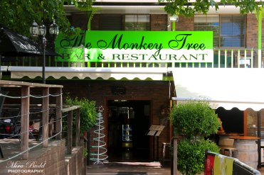Mount Tamborine, Monkey Tree and Restaurant,