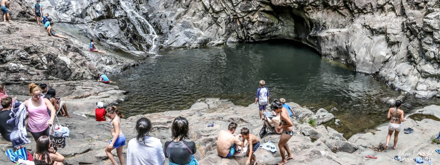 Cedar Creek Falls, Swimming Hole, Mount Tamborine, Beautiful Beaches in Australia, Surfers Paradise, Things to See in Surfers Paradise, Places to Visit in Australia, Best Beaches on The Gold Coast, Amazing Places in the World,