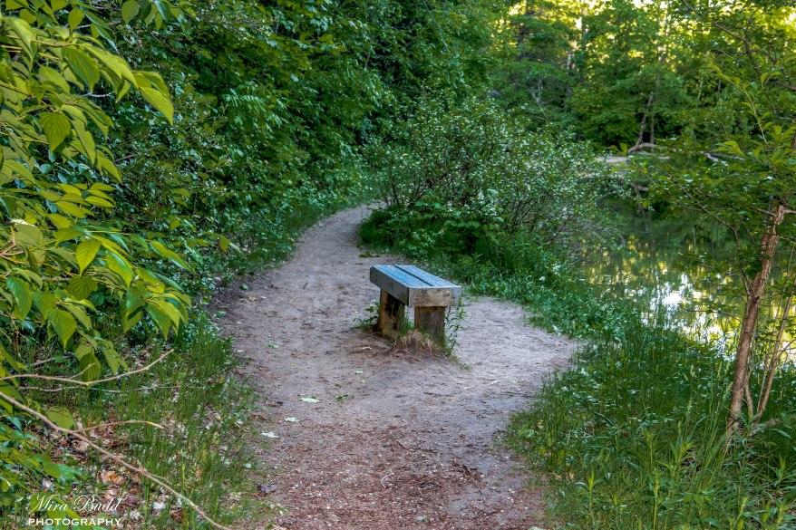 Mono Cliffs Provincial park, Ontario hiking Trails, Beautiful Places in Ontario, Hiking Ontario, Bruce trail,
