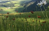 Hiking Trails Canada, Best Hiking Trails Canada, The Great Trail, The Trans Canada Trail,