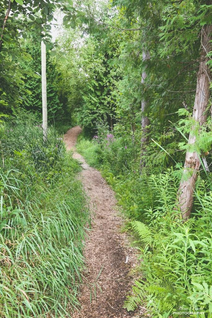 Trans Canada Trail, Hiking Trails Ontario, Ontario Hiking Trails, The Great Trail, Caledon Hiking Trails,