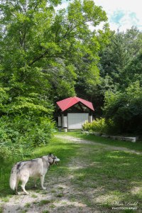 Trans Canada Trail Pavilion, Hiking Trails Ontario, Cycling Trails Ontario, Hiking Trails Caledon, Beautiful trails in Ontario,