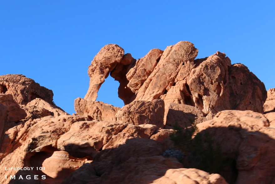 Places to visit in Las Vegas, Hiking Las Vegas, Elephant Rock Valley of Fire State Park,