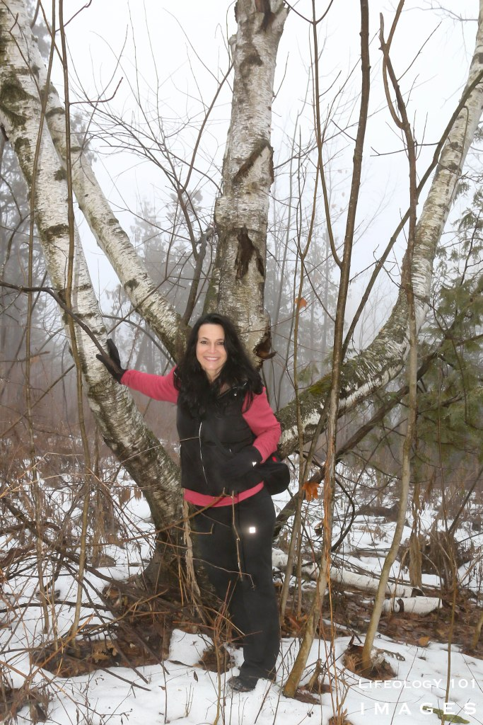 Things to Do in Ontario, Silver Creek Conservation Area, Ontario Hiking Trails, Places to Visit in Ontario, Ontario Waterfalls,