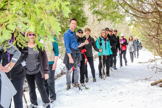 Ontario Hiking, hiking trails in Ontario, Bruce Trail Hiking, Collingwood Hiking Trails, Nottawasaga Bluffs Conservation Area,