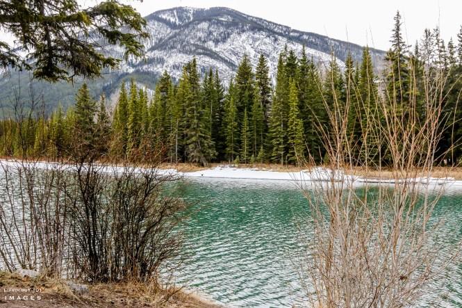 Canada Hiking Trails, Trans Canada Trail - Banff Legacy Trail
