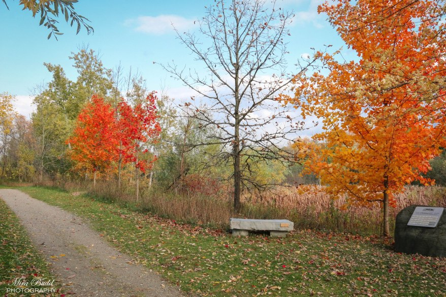 The Great Trail, Hiking Trails Caledon, Ontario Hiking Trails,