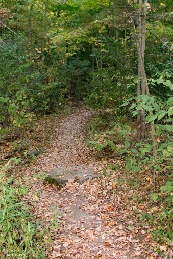 Bruce Trail Hiking, Ontario Hiking Trails,