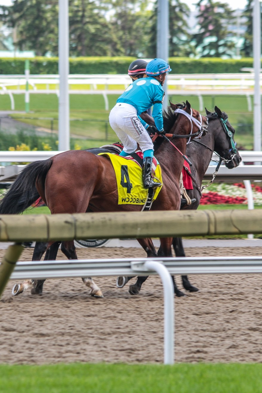 Horse Races Ontario, Woodbine Racetrack, Queen's Plate, Things to do in Ontario, Toronto Events, best Toronto events,
