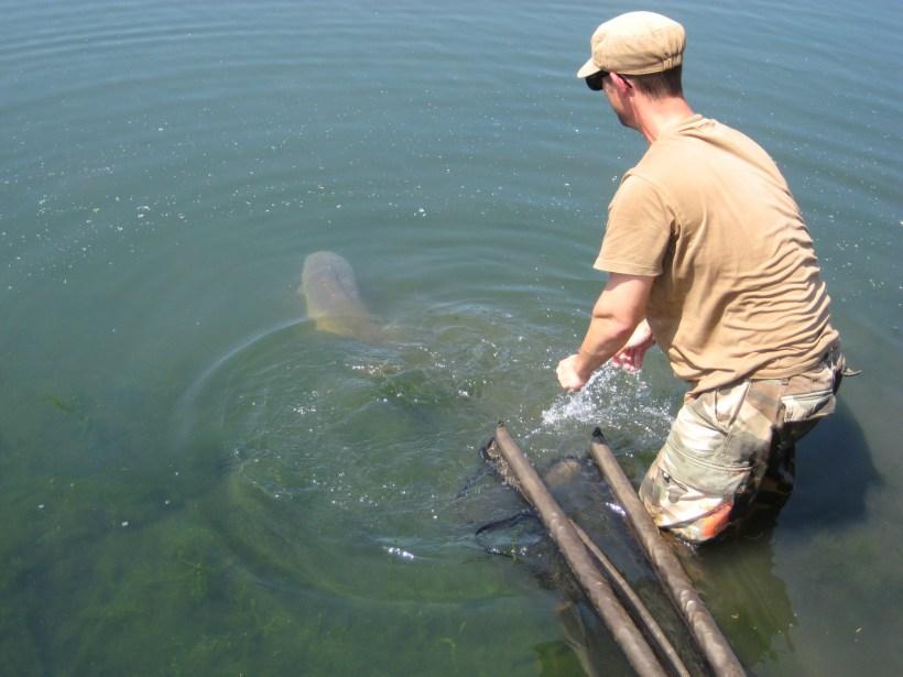 walthamstow carp fishing