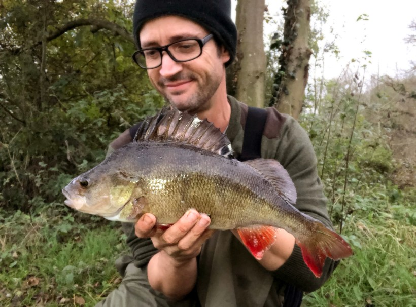 lea valley perch fishing
