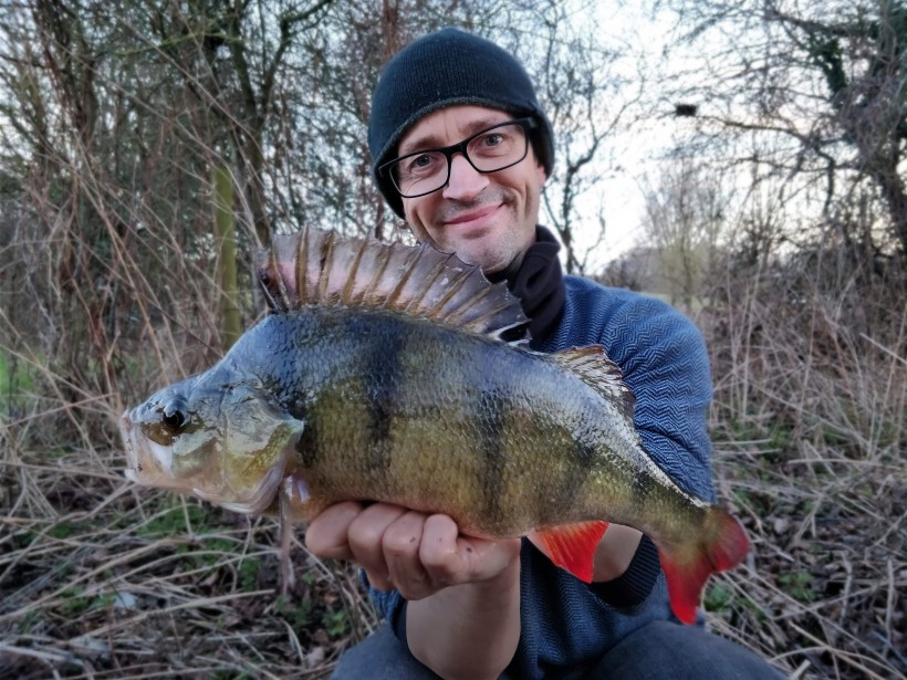 big perch fishing river stort