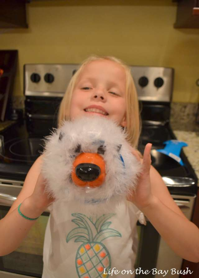 how to make a guinea pig