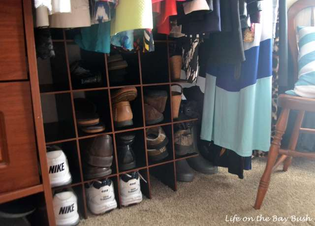 Closet-shoe-organization