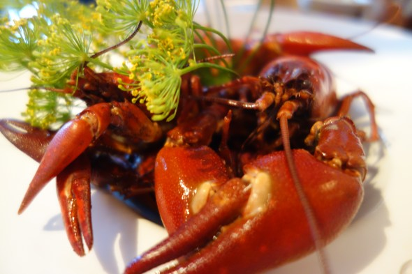 Crayfish boil at T/Bar Stockholm