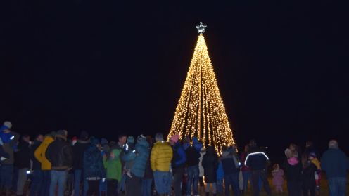 Tiree's very own wind resistant Christmas Tree and lights