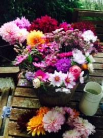 Flower overload !