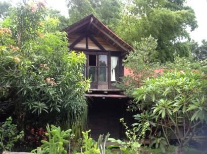 Cabin in the woods (aka her backyard)