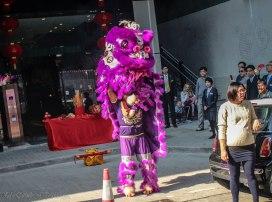 Lion Dance-5