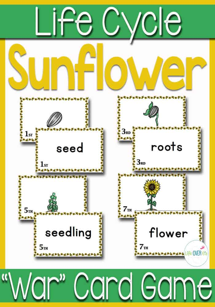 Printable Sunflower Life Cycle Sequencing Card Game