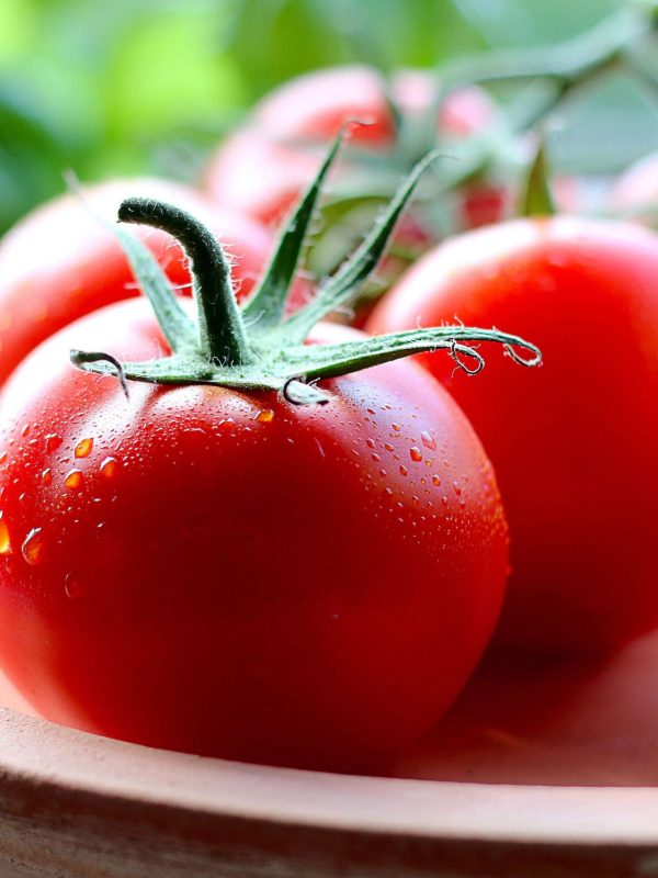 3 Must-Know Vegetable Gardening Tips