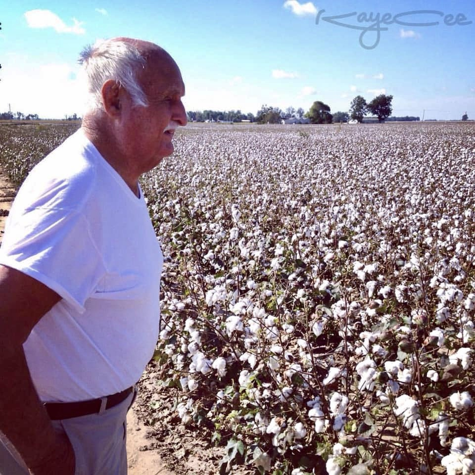 James Chambers checking his cotton field in Arkansas