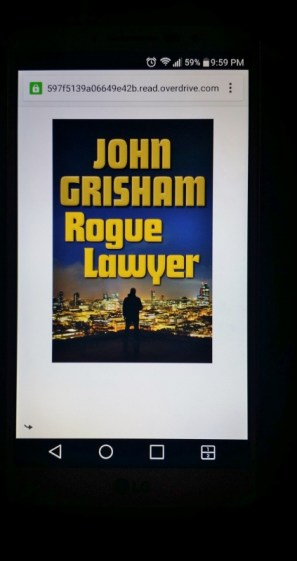 eBook: Rogue Lawyer