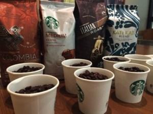 コーヒー初心者の自分にもわかった!なぜスタバのコーヒーセミナーが人気なのか?!