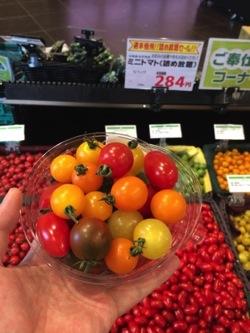 8種類を食べ比べてみてわかった!自分が好きなミニトマト!