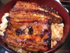 静岡浅間神社の近くで美味しい鰻が食べられるお店『うなぎの篝火』静岡