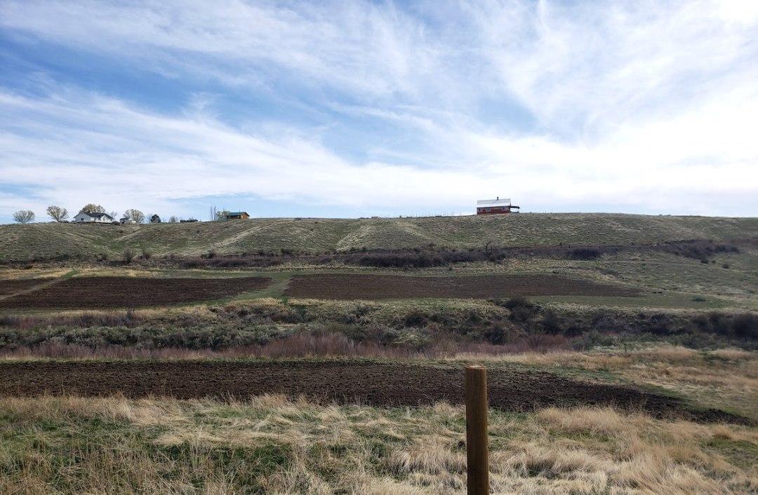 Healing Hollow Farm, Paonia, Colorado
