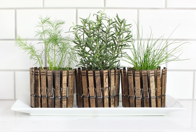 clothespinplanters_3tray
