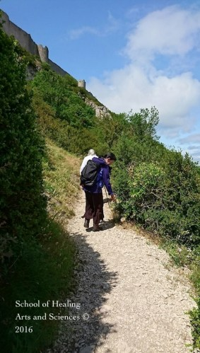 ケリビュス城への道