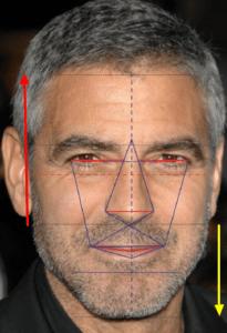 golden ratio in human face