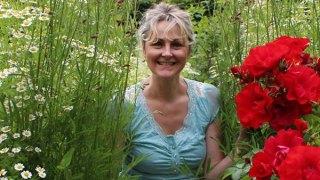 Sarah Wint - The Daisybus Gardens - Solva