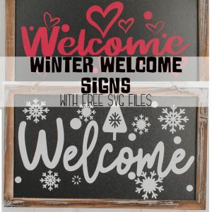 Scan N Cut Vinyl Project - Winter Welcome Sign