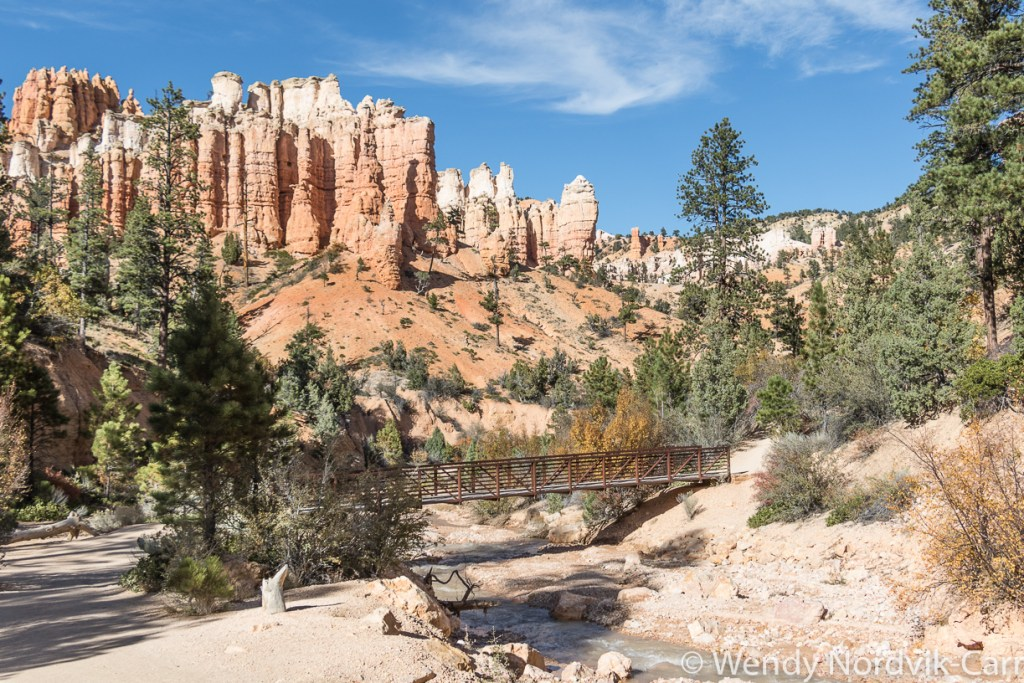 Travel to Bryce Canyon to discover the largest hoodoo collection in the world. A visit to Mossy Creek is one of the top things to do in Bryce Canyon National Park. Photo Credit: Wendy Nordvik-Carr