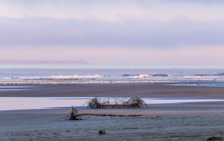 Stunning Kalaloch beach at sunrise - Top things to do in Olympic National Park