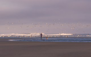Relax and recharge - Stunning Kalaloch Beach - Top things to do in Olympic National Park