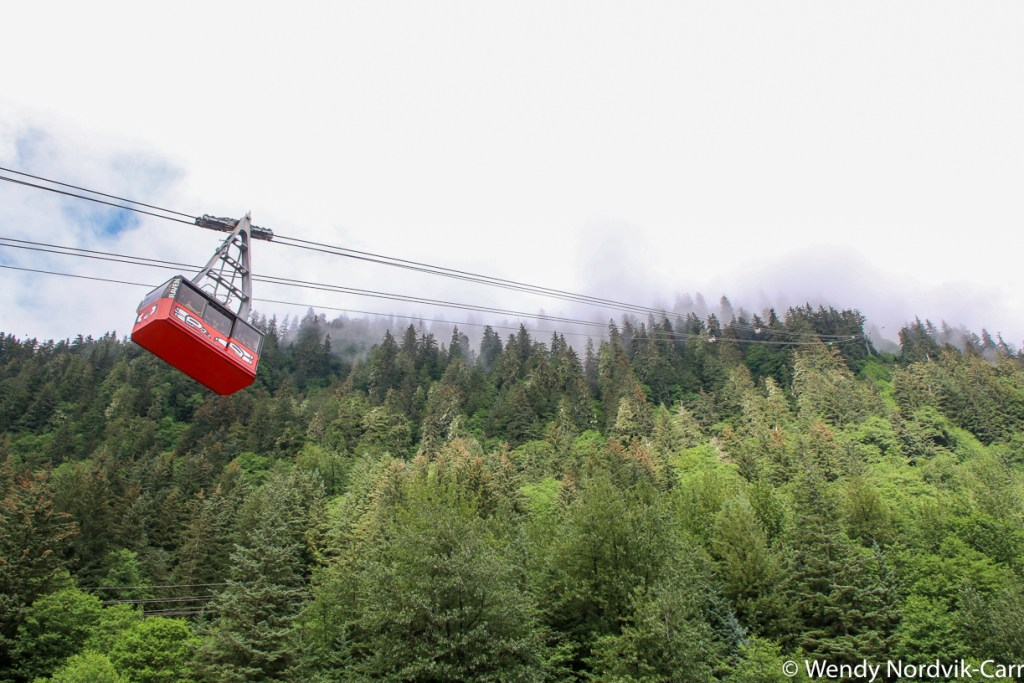Take a trip up Mount Roberts Tramway. Discover the breathtaking scenery of Alaska wilderness. Explore top things to do in Juneau.