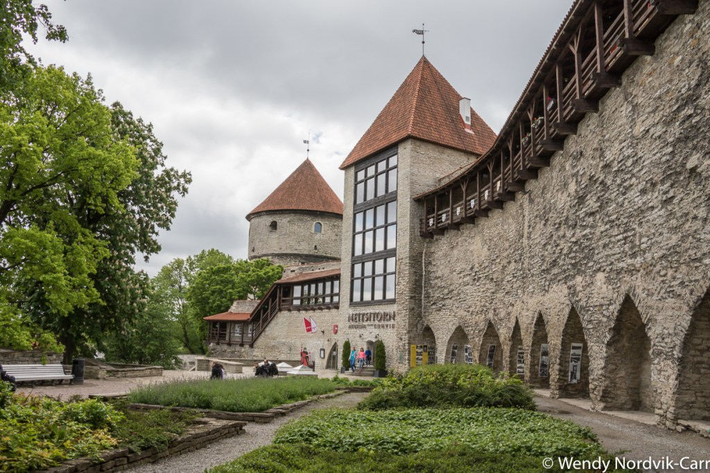 Danish King's Garden is the location of the most famous parts of The Wall. There is plenty to discover in Tallinn's Old Town. It is rich in medieval and Hanseatic history and is a designated UNESCO World Heritage Site. Photo Credit: Wendy Nordvik-Carr