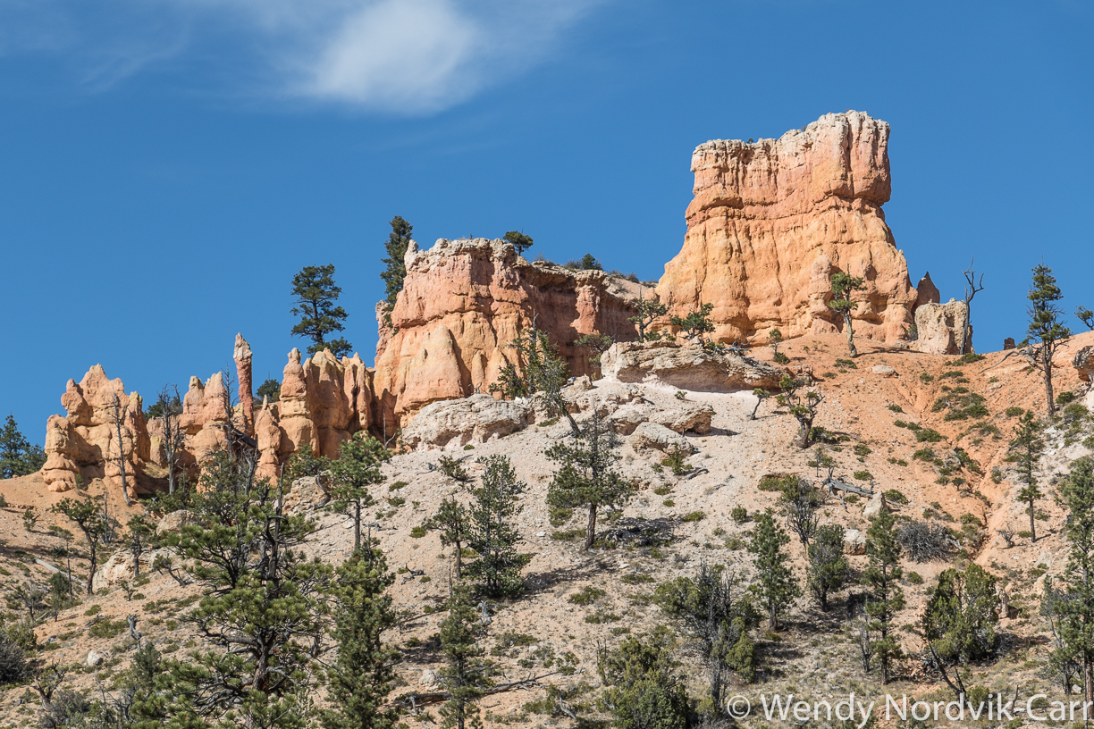 Travel to Bryce Canyon to discover the largest hoodoo collection in the world. A visit to Mossy Creek is one of the top things to do in Bryce Canyon National Park. Photo Credit: Wendy Nordvik-Carr©