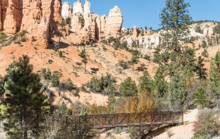 Travel to Bryce Canyon to discover the largest hoodoo collection in the world. A visit to Mossy Creek is one of the top things to do in Bryce Canyon National Park. Wendy Nordvik-Carr