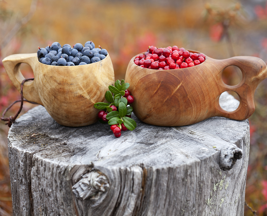 Lingon berries and blueberries traditional foods of Finland. Photo Credit: Soili Jussila Vastavalo, Visit Finland