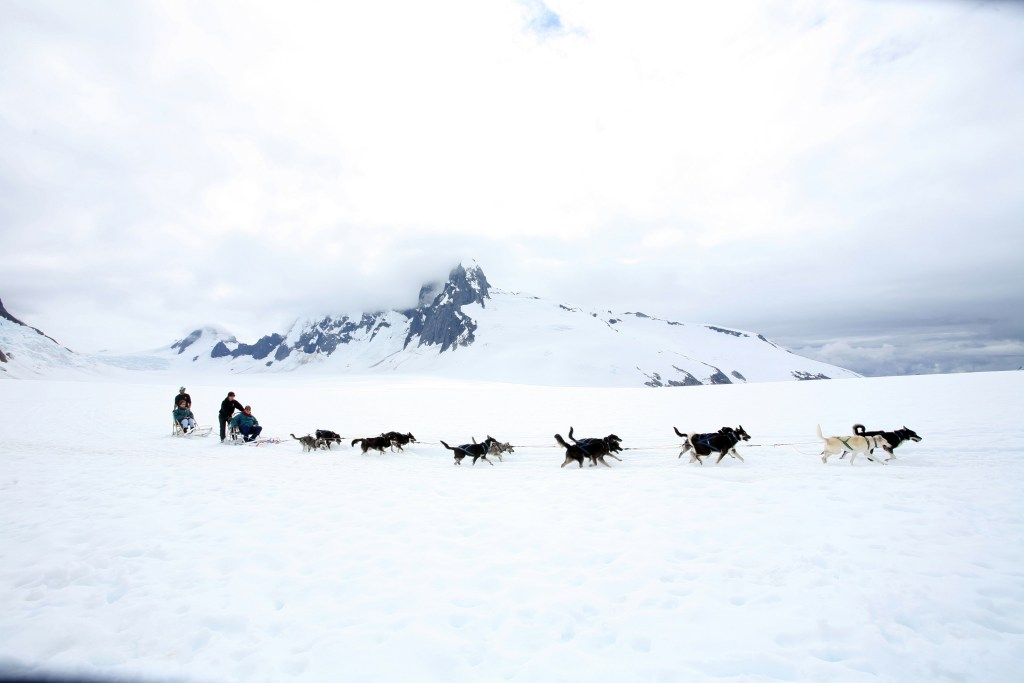 Dog sledding on a glacier near Juneau. Photo Credit: State of Alaska, Brian Adams©