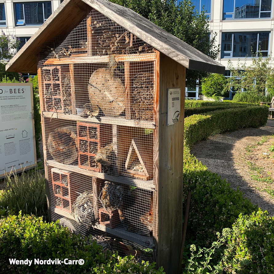 Built in 2015 the Rooftop Pollinator Hotel at the Fairmont Waterfront Hotel provides a habitat for hundreds of bee species. Photo Credit: Wendy Nordvik-Carr©
