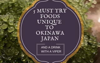 5 Must try food unique to Okinawa Japan. Photo Credit: Wendy Nordvik-Carr©