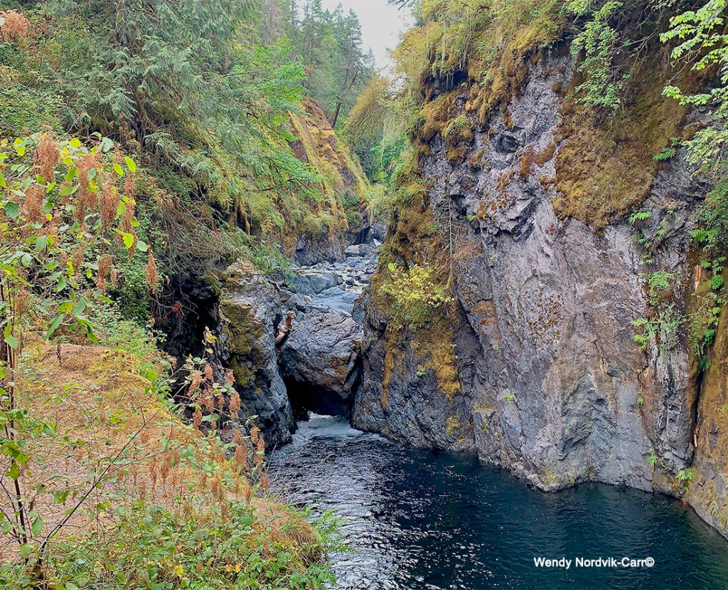 Top things to do on Vancouver Island - take a hike to Little Qualicum Falls. Photo Credit: Wendy Nordvik-Carr©
