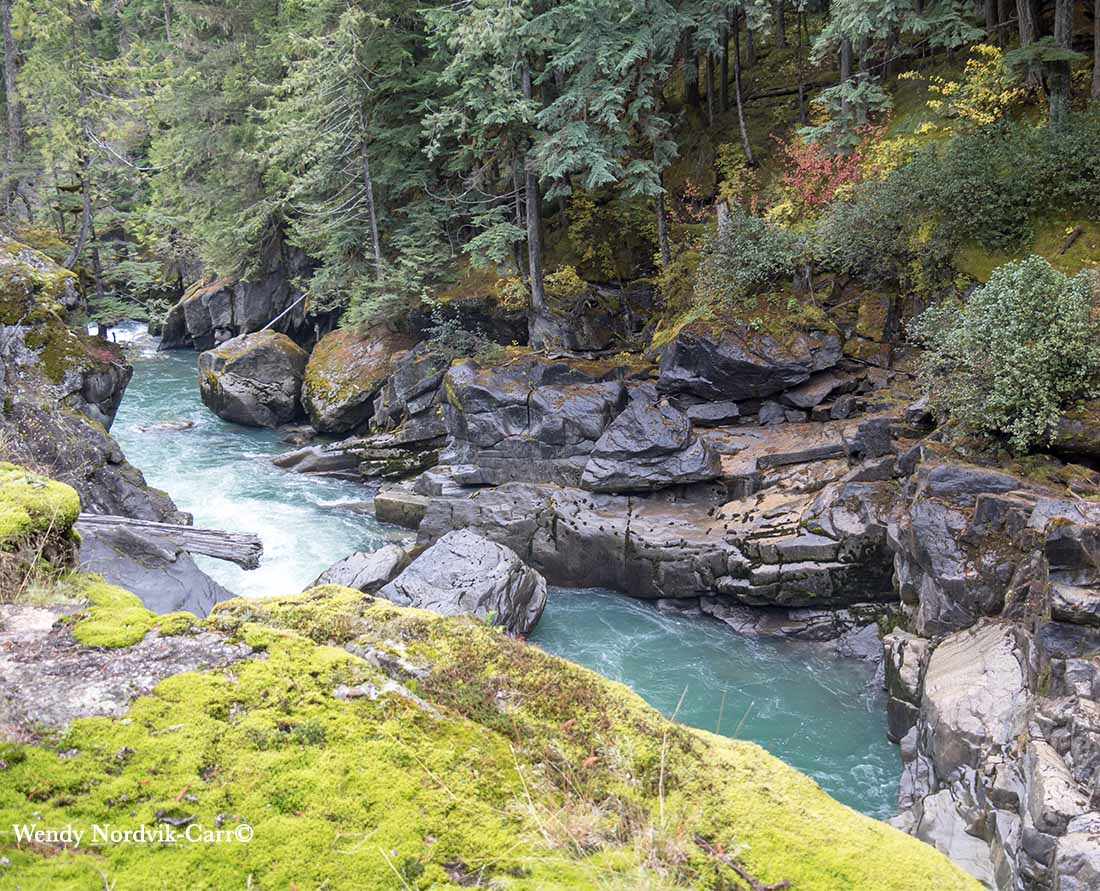 The fast-flowing emerald green waters of the Green River in Nairn Falls Provincial Park near Pemberton.