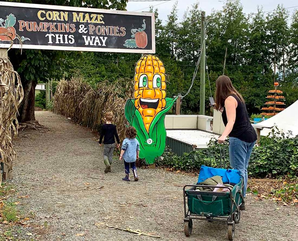 E and L continue their adventures at Taves Family Farms Applebarn. Photo: Wendy Nordvik-Carr©